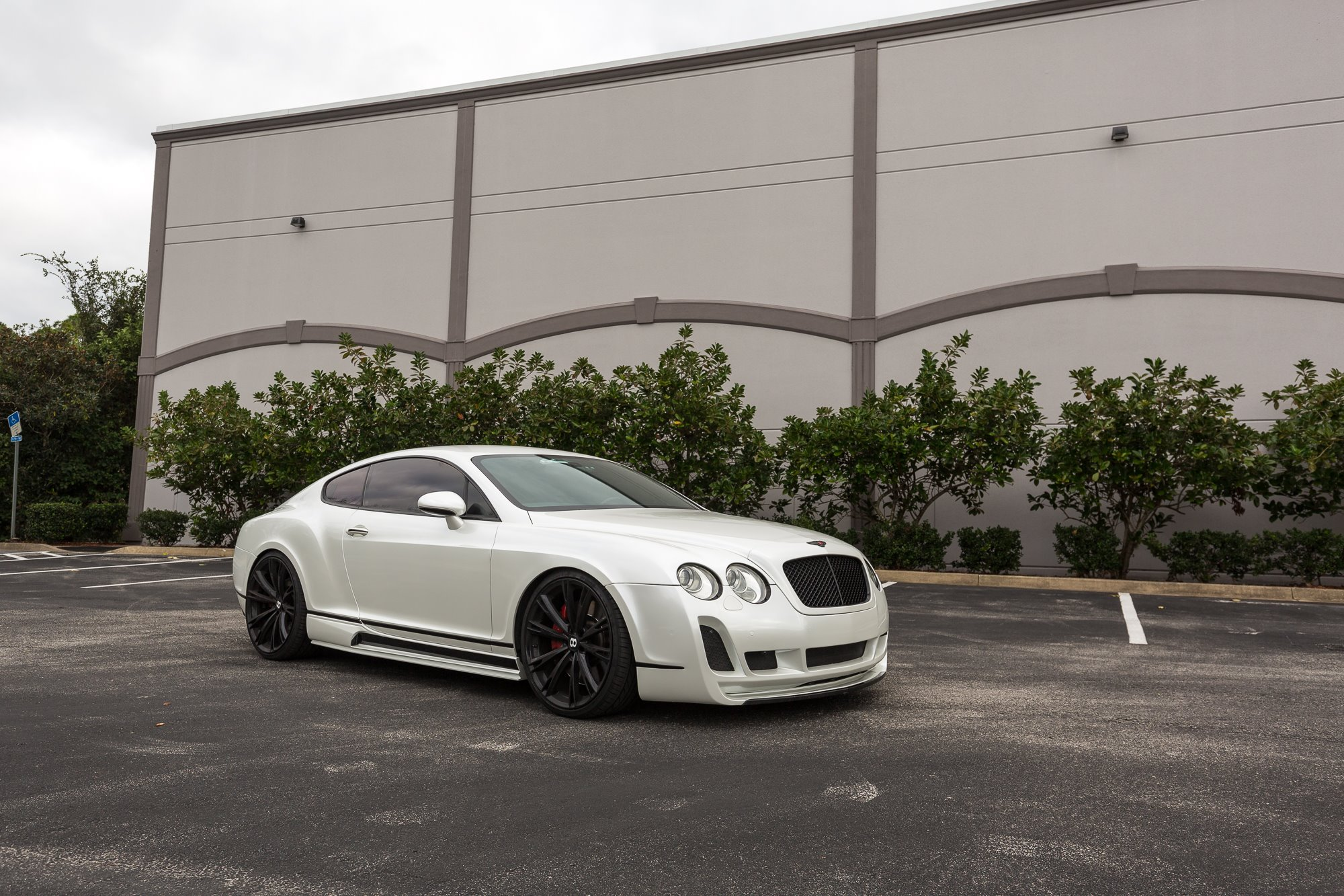 bentley-gloss-white-pearl-wrap